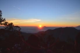 Enjoying The Golden Sunrise2