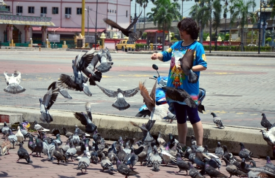 A woman is feeding pigeons